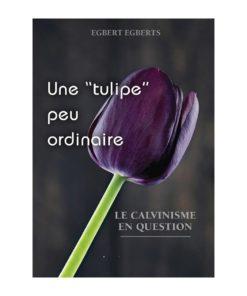 Une tulipe peu ordinaire !
